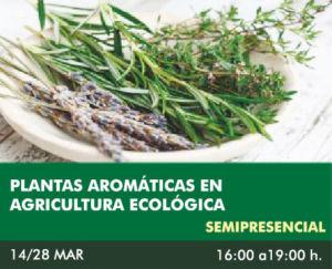 cursosGRATUITOS-plantasAROMATICAS1