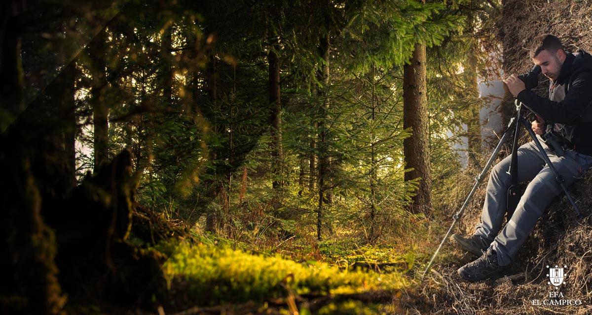 Ciclo Formativo Grado Superior en Gestion Forestal y del Medio Natural